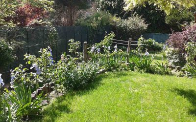 Un jardin en pente à simplifier