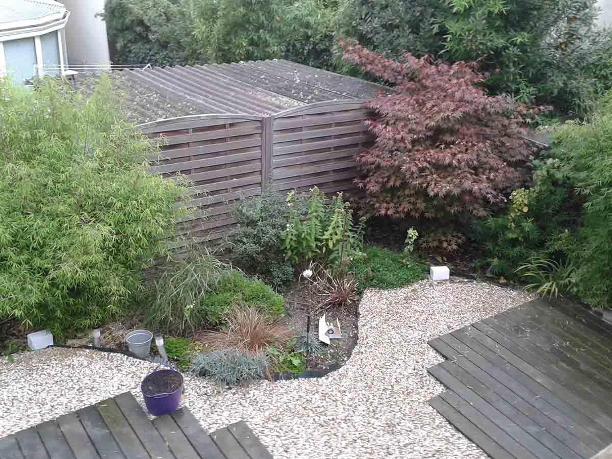 3 ans après, le jardin vit !