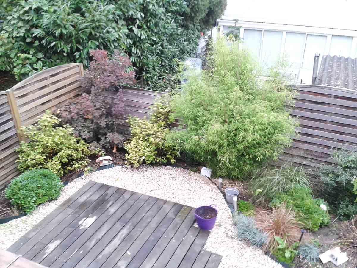 Le jardin vit !